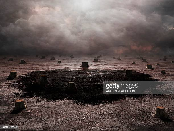 deforestation, conceptual artwork - deforestation stock illustrations