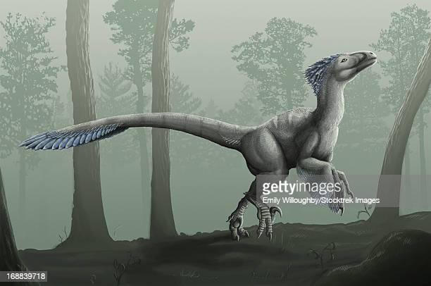 deinonychus antirrhopus in a misty forest. - velociraptor stock illustrations