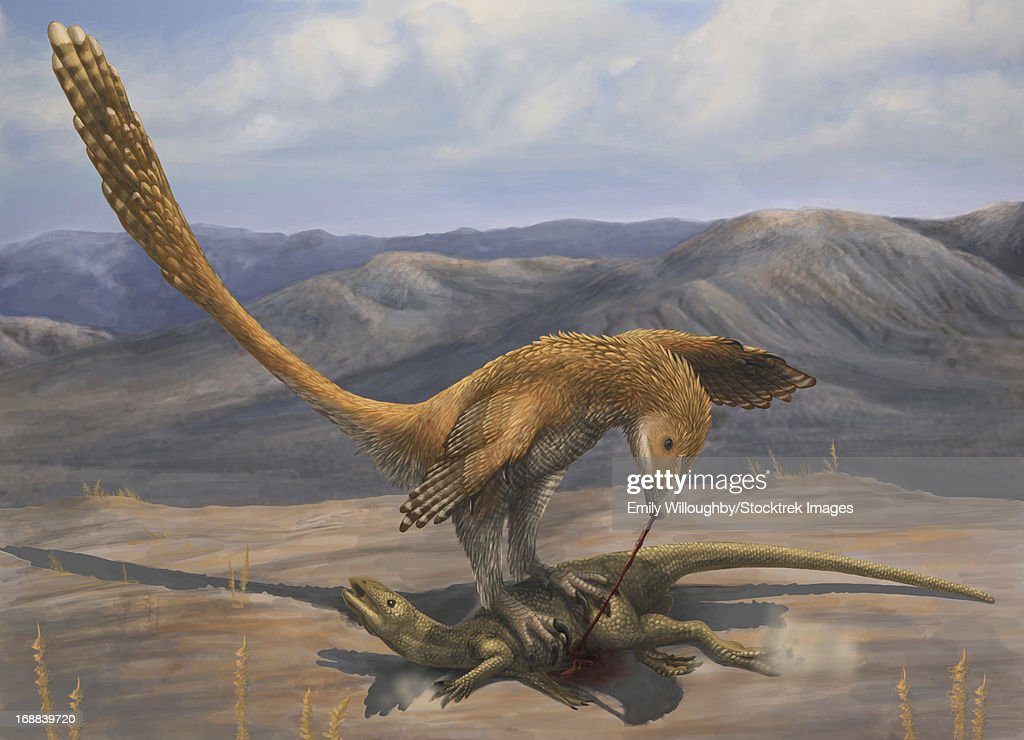 A Deinonychus feeds on the carcass of Zephyrosaurus, a small Cretaceous ornithopod. : stock illustration