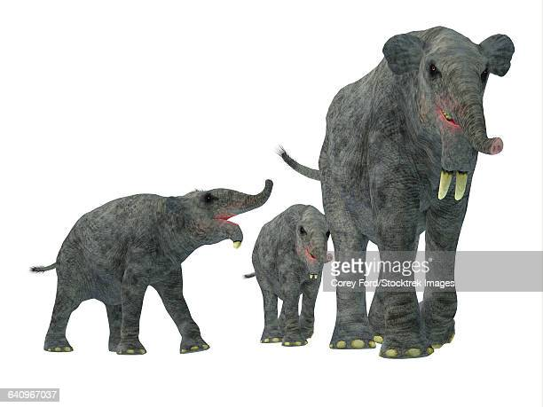 Deinotherium with offspring.