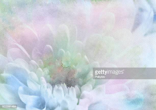 delicate petals, watercolor background