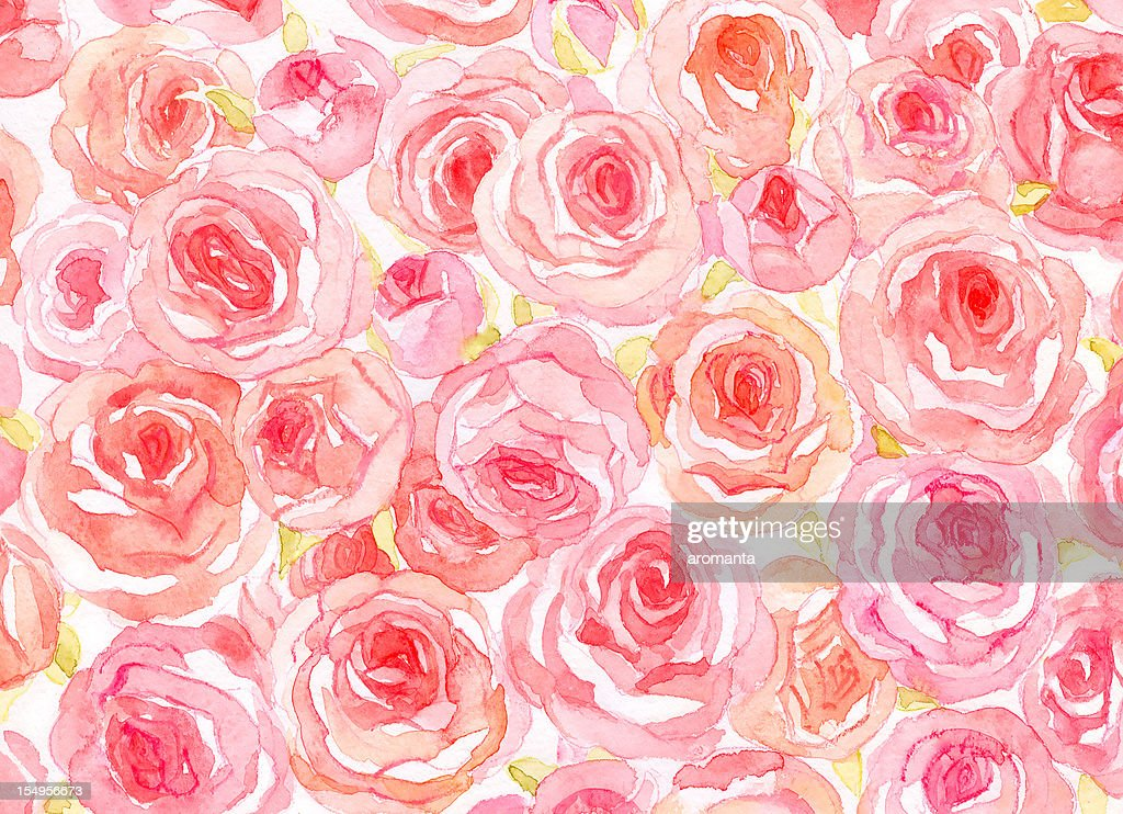 Delicate watercolor roses : stock illustration
