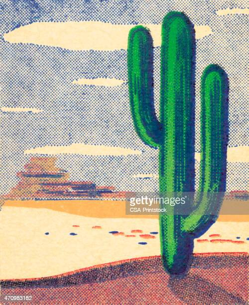 desert - saguaro cactus stock illustrations