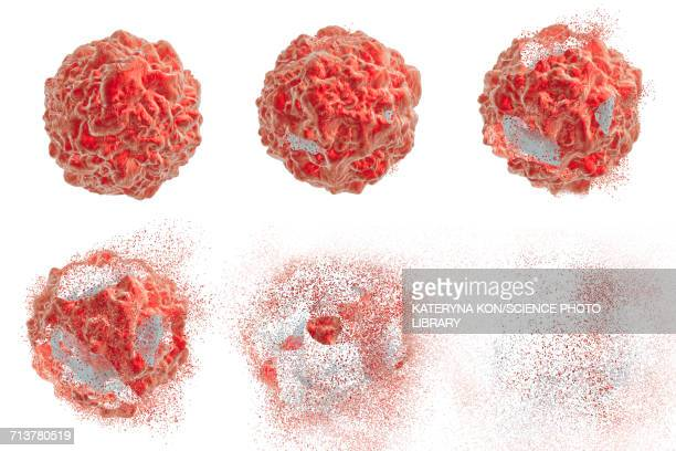 destruction of a cancer cell, illustration - tumor stock illustrations