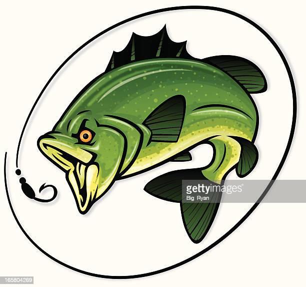 detailed bass illustration - bass fishing stock illustrations