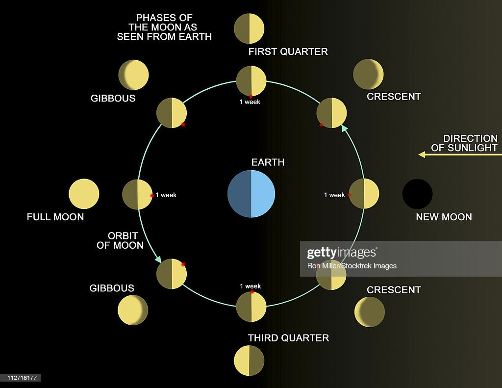 A diagram showing the phases of the earths moon stock illustration a diagram showing the phases of the earths moon stock illustration pooptronica Choice Image