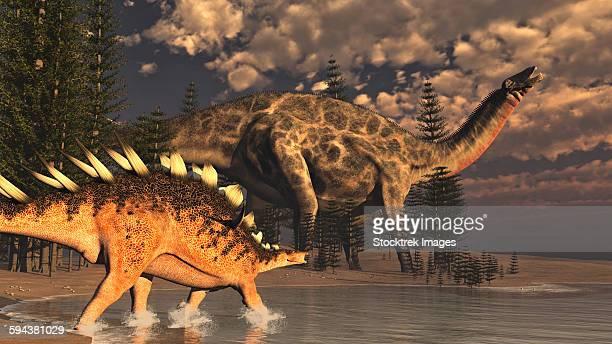 dicraeosaurus and kentrosaurus dinosaur walking peacefully next to calamite trees by sunset. - scute stock illustrations, clip art, cartoons, & icons
