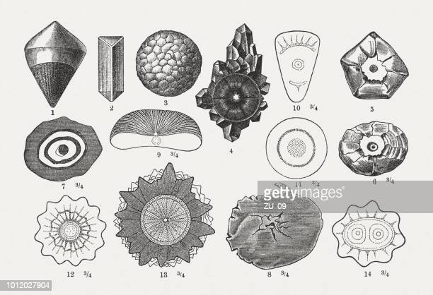 different forms of hailstones, wood engravings, published in 1897 - hailstone stock illustrations, clip art, cartoons, & icons