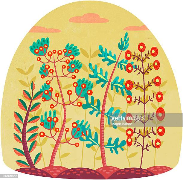 different types of plants growing beside each other - other stock illustrations, clip art, cartoons, & icons