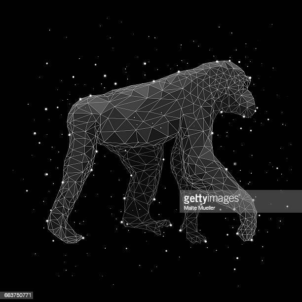 digital composite image of constellation forming chimpanzee against black background - chimpanzee stock illustrations, clip art, cartoons, & icons