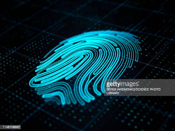 digital fingerprint, illustration - technology stock illustrations