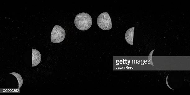 Digital Illustration of the Phases of the Moon