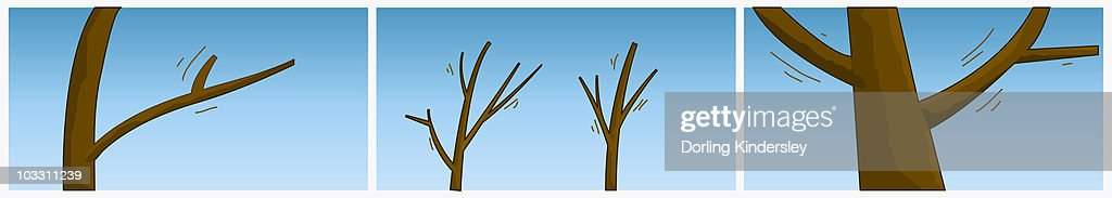 Digital illustration of wind moving branches of bare trees : stock illustration