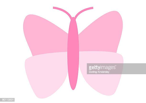 Digital illustration representing pink butterfly