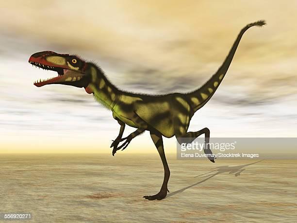 ilustraciones, imágenes clip art, dibujos animados e iconos de stock de dilong dinosaur in the desert - paleozoología