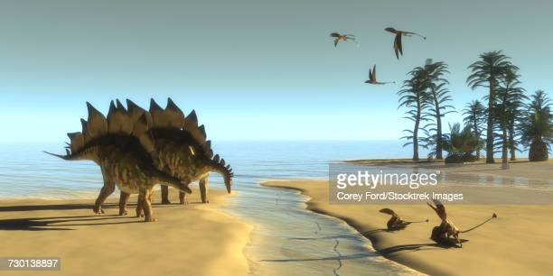 dimorphodon reptiles fly over two stegosaurus dinosaurs drinking from a stream. - scavenging stock illustrations