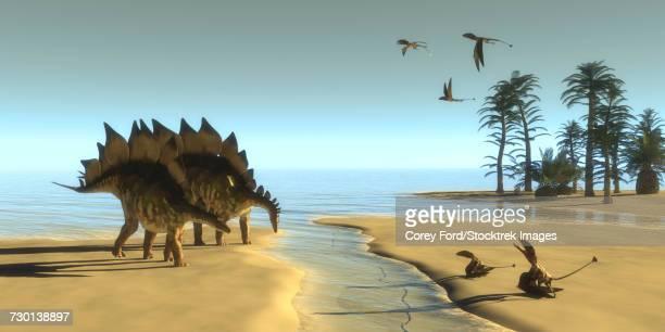 ilustraciones, imágenes clip art, dibujos animados e iconos de stock de dimorphodon reptiles fly over two stegosaurus dinosaurs drinking from a stream. - triásico