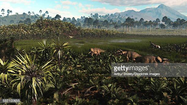 Dinosaurs graze the lush delta lands of North America 76-74 million years ago.