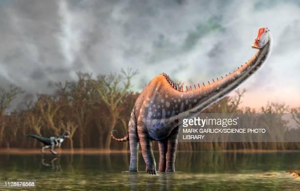 diplodocus dinosaur, illustration - paleontology stock illustrations