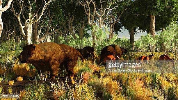 diprotodon on the edge of a eucalyptus forest with some early kangaroos. - paleontology stock illustrations