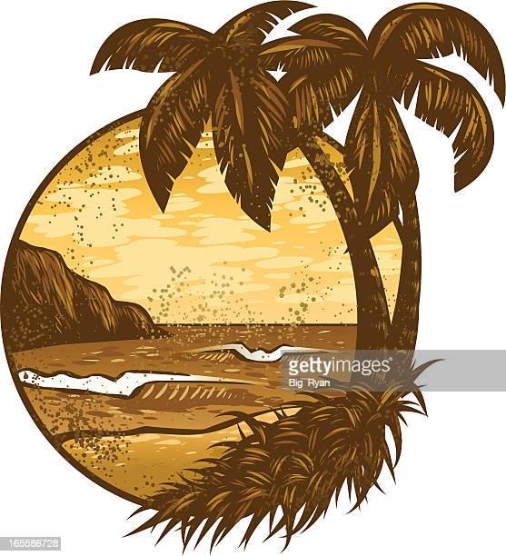 dirty hawaii - big island hawaii islands stock illustrations