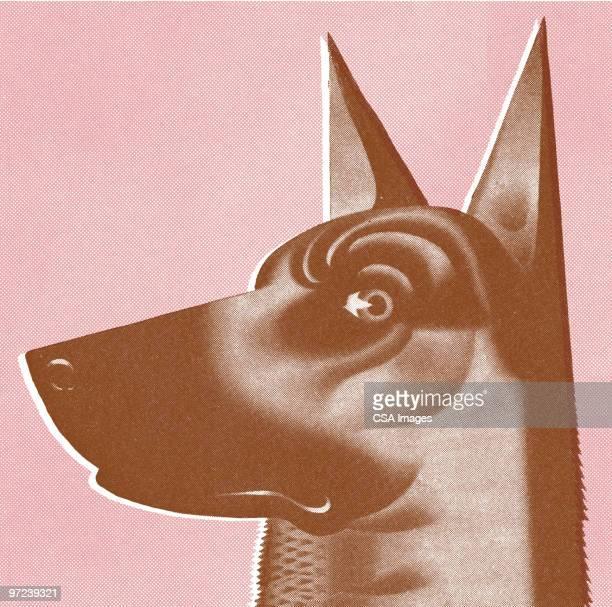 doberman - alertness stock illustrations