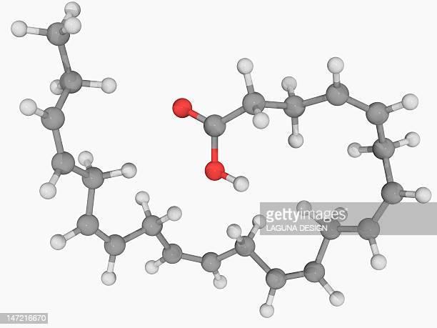 docosahexaeonic acid molecule - fatty acid stock illustrations