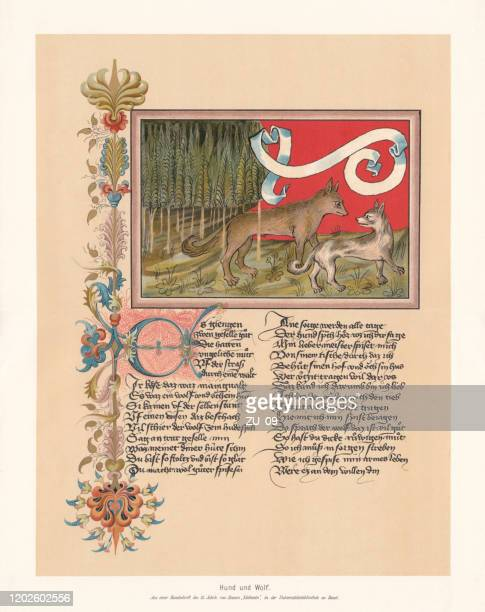 dog and wolf, fable by ulrich boner (ca.1349), facsimile, 1897 - manuscript stock illustrations