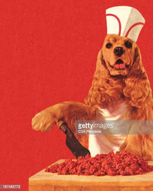 dog butcher wearing hat - ground beef stock illustrations