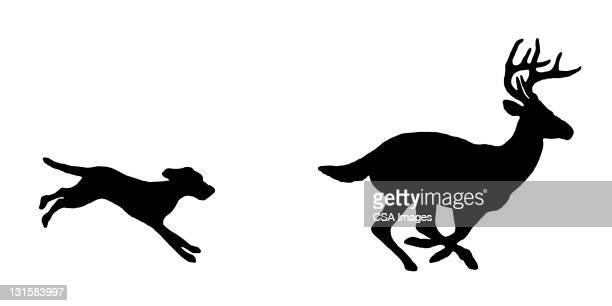 dog chasing deer - stag stock illustrations