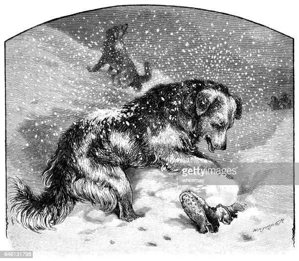 dog finding a person buried in the snow - buried stock illustrations, clip art, cartoons, & icons