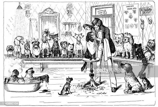 illustrations, cliparts, dessins animés et icônes de salon de coiffure pour chiens - coiffeur humour