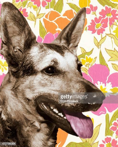 Dog Head on Floral Background
