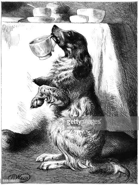Dog holding a tea cup in his mouth
