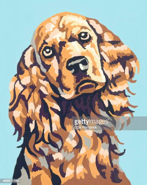 dog - spaniel stock illustrations