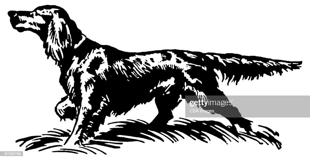 Dog : stock illustration