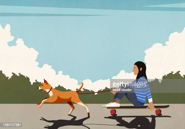 dog on leash pulling girl riding skateboard on sunny road - leisure activity stock illustrations