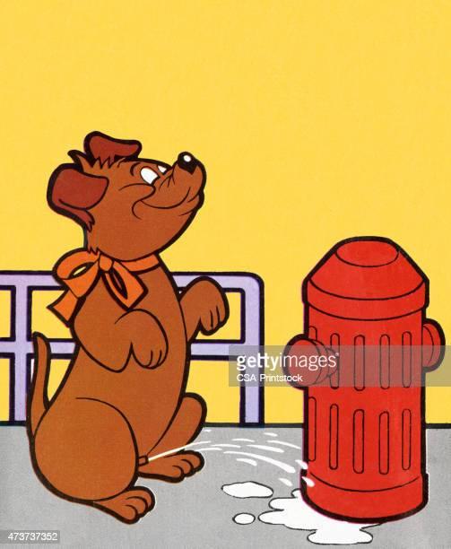 ilustraciones, imágenes clip art, dibujos animados e iconos de stock de perro peeing en boca de incendios - orina