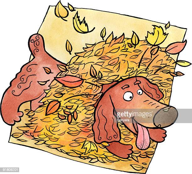 A dog playing in a pile of autumn leaves
