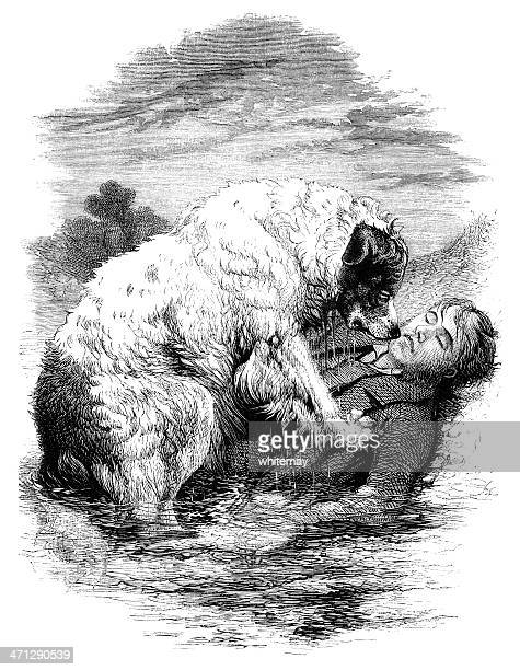 dog rescuing a man from drowning - drowning stock illustrations, clip art, cartoons, & icons