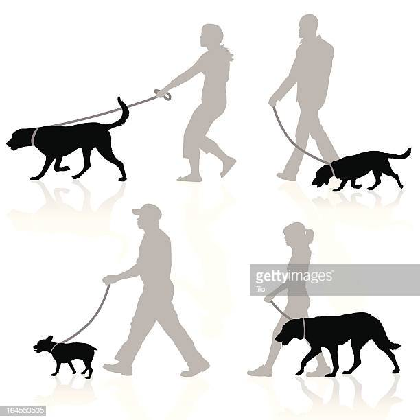 dog walkers - dog leash stock illustrations, clip art, cartoons, & icons