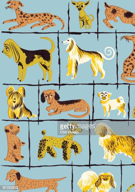 dogs - pure bred dog stock illustrations