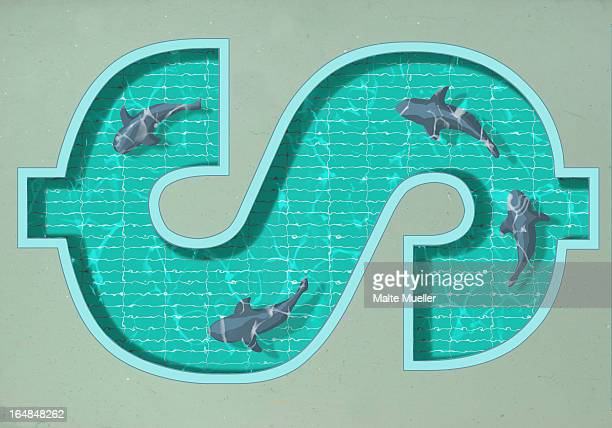a dollar sign shaped swimming pool with four sharks swimming in it - finanzen stock illustrations