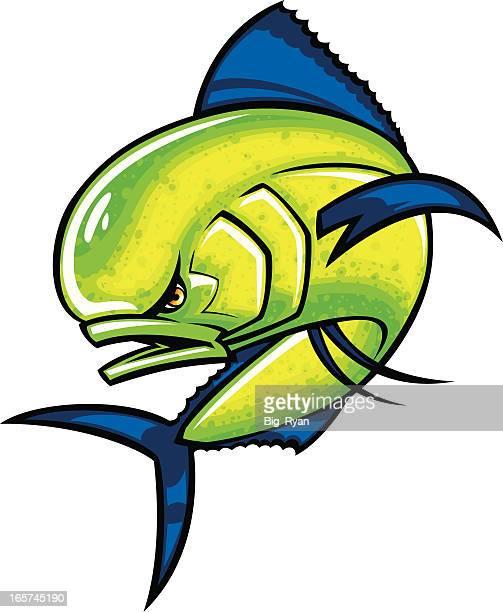 dolphin fish - dolphin fish stock illustrations