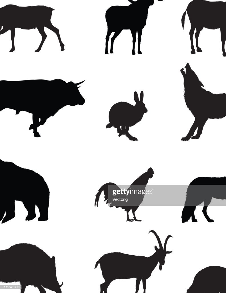 Domestic and Wild Animals Silhouette : Stock Illustration