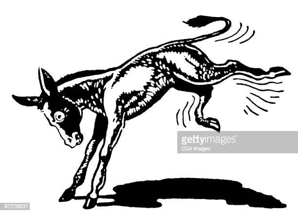 donkey - donkey stock illustrations, clip art, cartoons, & icons