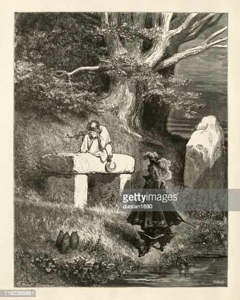 ilustrações de stock, clip art, desenhos animados e ícones de donkeyskin, fairy tales of charles perrault - megalith