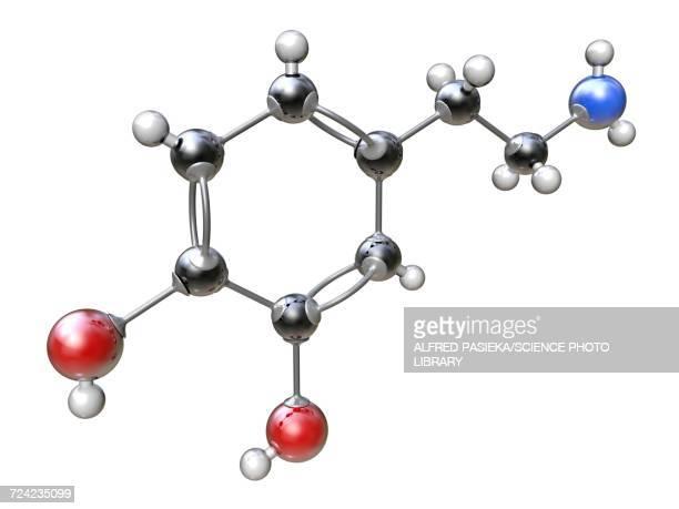 dopamine organic compound molecule - synapse stock illustrations