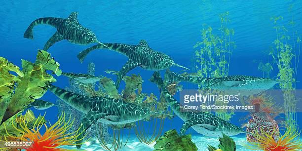 ilustraciones, imágenes clip art, dibujos animados e iconos de stock de doryaspis, an extinct genus of primitive jawless fish that lived in the ocean during the devonian period. - biodiversidad