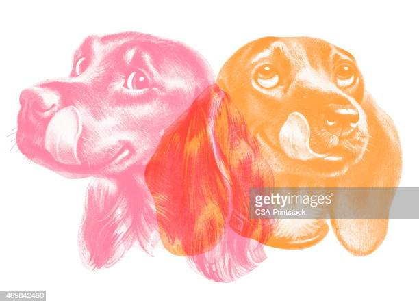 double dog - licking stock illustrations, clip art, cartoons, & icons